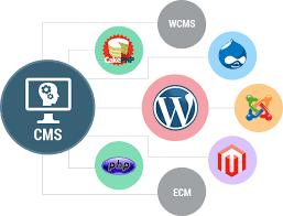 CMS-технологии. Философия контента